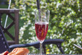 Sparkling rose wine a glass full of red at a barbeque party table Royalty Free Stock Image