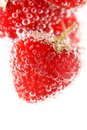 Sparkling wine champagne and strawberry on a white background Stock Image