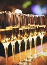 Sparkling wine glasses champagne stand in row at the bar, catering Royalty Free Stock Photo