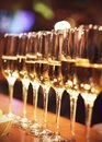 Sparkling wine glasses champagne stand in row at bar, catering Royalty Free Stock Photo