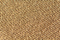 Sparkly gold knitted wool background fabric texture in reverse stocking stitch Stock Photos