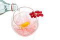 Sparkly water being poured into gin hard liquor drink with goose gooseberries fruits isolated on white Royalty Free Stock Photos