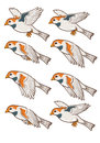 Sparrow flying animation sprite for game Royalty Free Stock Photo
