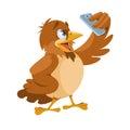 Sparrow making selfie