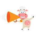 Speaker cow illustration of chef on white background Royalty Free Stock Image