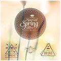 Special spring offer typographic design set with colorful background Stock Photos