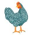 Speckled chicken funny vector illustration