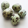 Speckled eggs. Royalty Free Stock Image