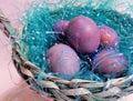 Violeta huevos en tejido 2
