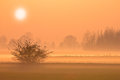 Spectaculair peach colored sunset with orange haze and fog Royalty Free Stock Photo