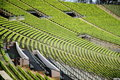 The spectator stands of munich olympia main stadium Royalty Free Stock Images