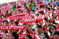 Spectators waving scarves during NDP 2012 Royalty Free Stock Images