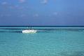 Speed boat in maldives the at beach Stock Images