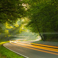 Speed morning on the road in forest fast cars Stock Image