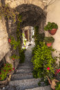 Spello perugia umbria italy typical alley potted plants flowers Royalty Free Stock Photography