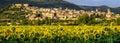 Spello Umbria Italy Royalty Free Stock Photo