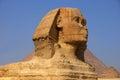 Sphinx, EGYPT. Royalty Free Stock Photo