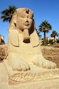 Sphinx, Luxor Image stock