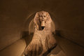 Sphinx of Tanis, The Louvre, Paris, France Royalty Free Stock Photo