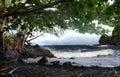 Spiaggia hawaiana ombreggiata Fotografia Stock Libera da Diritti