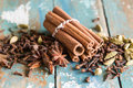 Spice collection with cardamom cinnamon cloves star anis Royalty Free Stock Photos