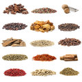 Spice collection isolated on white background Royalty Free Stock Image