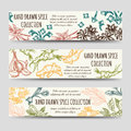 Spice and herbs vintage banners template