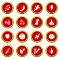 Spice icon red circle set