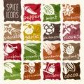 Spice icon set.