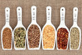 Spice measurement selection in white porcelain scoops with metric over hessian background Royalty Free Stock Images