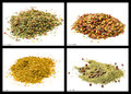 Spice mixtures aromas spaghetti garlic chili cariocas and creole herbs Royalty Free Stock Image