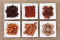 Spice Sampler Stock Photography