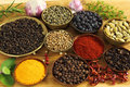 Spices ang herbs Royalty Free Stock Images