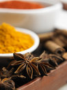 Spices close up of the anise star and turmeric as background Royalty Free Stock Photo