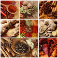 Spices collage Stock Image