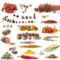 Spices Collection Royalty Free Stock Photo