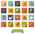 Spices and Condiments Flat Design Square Icon Set
