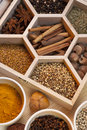 Spices - Cooking Ingredients - Flavoring Stock Images
