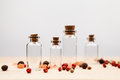 Spices and empty, small glass bottles Royalty Free Stock Photo