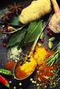 Spices and herbs food cuisine ingredients Stock Images