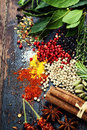 Spices and herbs over wood food cuisine ingredients Royalty Free Stock Images
