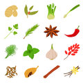 Spices icons set, cartoon style