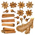 Spices raw material for cooking and baking.Mulled wine ingredients cinnamon, anise, raisins, ginger ,cloves isolated on