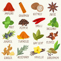 Spices  set Royalty Free Stock Photo
