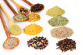 Spices in the spoons over the white Stock Photography