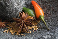 Spices in stone mortar Royalty Free Stock Photo