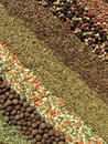 Spices various suitable as background Stock Image