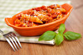 Spicy chicken penne pasta individual casserole dish with on checkered green cloth shallow depth of field Stock Photography
