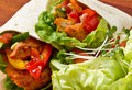 Spicy Chicken Wrap Royalty Free Stock Photos