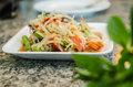Spicy food papaya salad for our dinner Royalty Free Stock Image